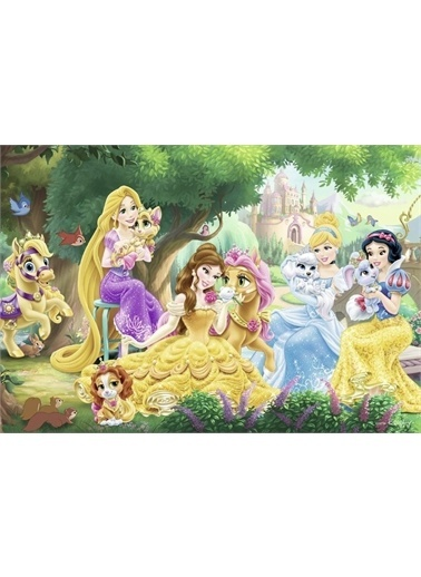 Ravensburger Puzzle 2-24 Prensesin Arkadaşları Rpk089529 Renkli